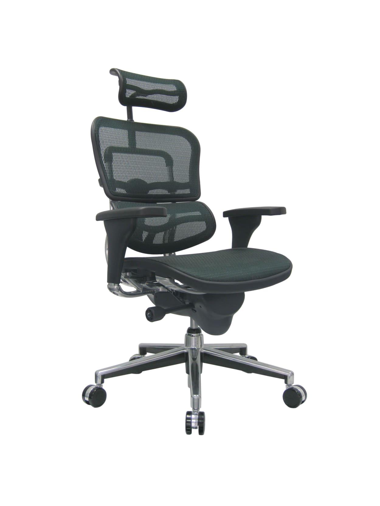 Raynor Ergohuman Mesh High Back Chair Black Office Depot