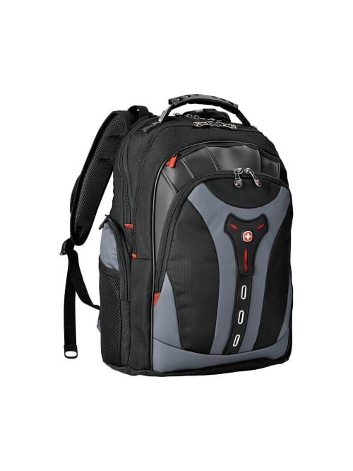 Rioserry Sonic Fashion USB Backpack 17 in-Inch Laptop Backpack Adjustable Shoulder Strap Mens and Womens Business Travel College School Backpacks