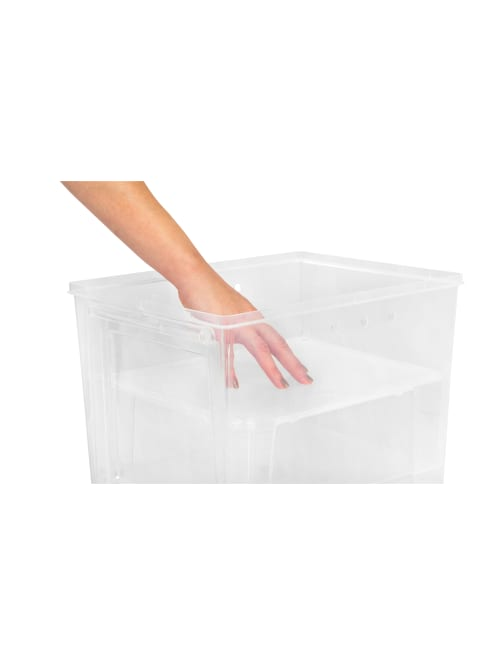 IRIS Easy Access Womens Shoe Box 4 Pack