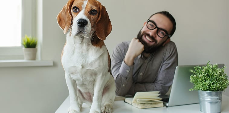 "Pet Project: How ""Take Your Dog to Work Day"" Can Improve Your Workplace"