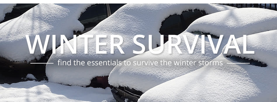 8 Winter Survival Tips From the Experts
