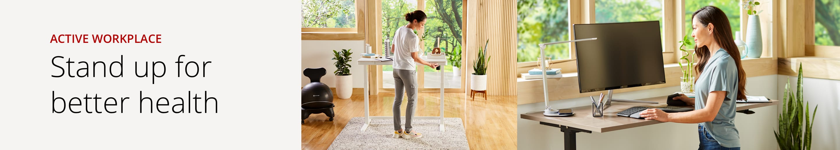 active workplace man at standing desk and woman sitting