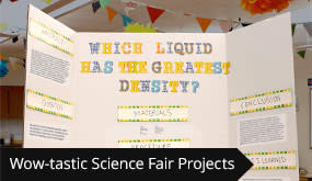 Wow-tastic Science Fair Projects