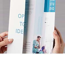 228x200_politicalSigns_brochures