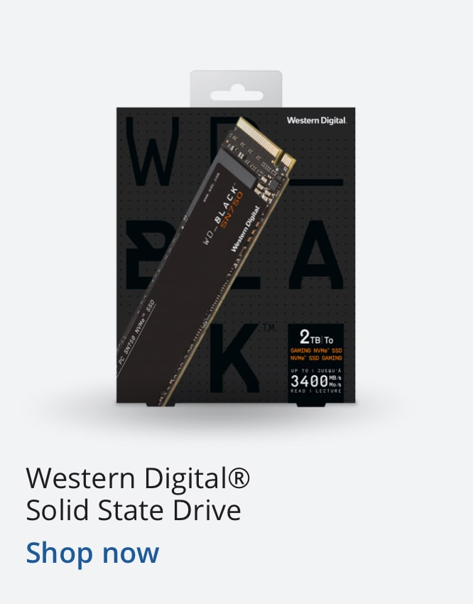 Western Digital® Solid State Drive (1)