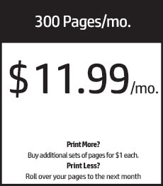 300 pages/mo