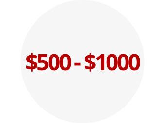 $500 - $1000