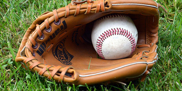 The Spring Sports Season