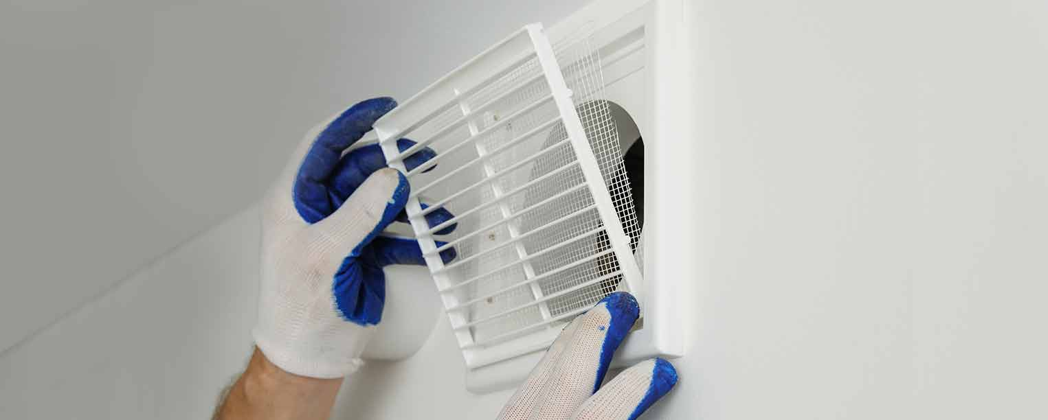 5 Steps to Cleaner Indoor Air at the Office
