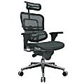 Raynor® Ergohuman High-Back Ergonomic Mesh Chair, Grey/Chrome