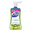 Dial Complete® Foaming Antibacterial Hand Wash, Fresh Pear, 7.5 Oz.