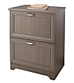 """Realspace® Magellan 24""""W 2-Drawer Lateral File Cabinet, Gray"""