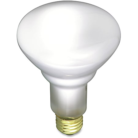 Satco Frosted Incandescent Floodlight, 65 Watt