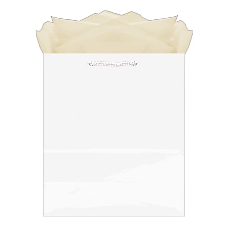 """Amscan Glossy Medium Gift Bags, 9-1/2""""H x 7-3/4""""W x 4-1/2""""D, White, Pack Of 10 Bags"""