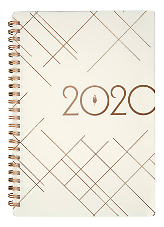 """inkWELL Press Deluxe liveWELL Weekly/Monthly Planner, 5-1/2"""" x 8-1/2"""", Cream, January To December 2020, IP641T-200"""