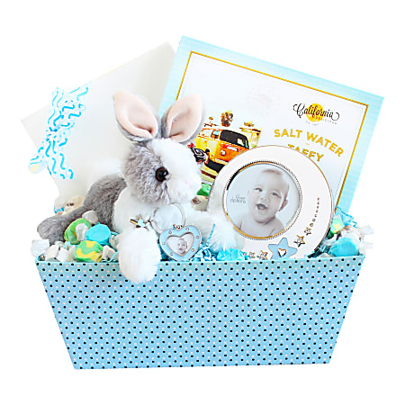 Givens and Company Welcome Baby Bunny And Picture Frame Gift Set, Boy