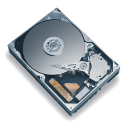 Maxtor® 300GB Ultra ATA/100 Internal Hard Drive, 7200 RPM
