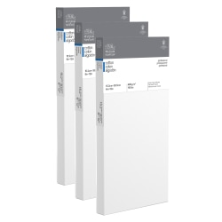 """Winsor & Newton Professional Cotton-Stretched Traditional Canvases, 6"""" x 12"""", White, Pack Of 2"""
