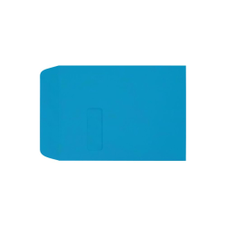 """LUX Open-End Window Envelopes With Peel & Press Closure, #9 1/2, 9"""" x 12"""", Pool, Pack Of 1,000"""