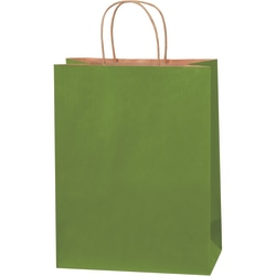 "Partners Brand Tinted Shopping Bags, 13""H x 10""W x 5""D, Green Tea, Case Of 250"