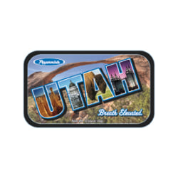 AmuseMints® Destination Mint Candy, Utah State, 0.56 Oz, Pack Of 24