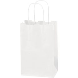 """Partners Brand Paper Shopping Bags, 5 1/4""""W x 3 1/4""""D x 8 3/8""""H, White, Case Of 250"""