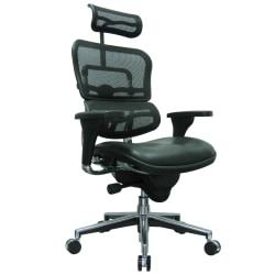 Raynor® Eurotech Ergohuman Mesh/Bonded Leather High-Back Chair, Black/Chrome