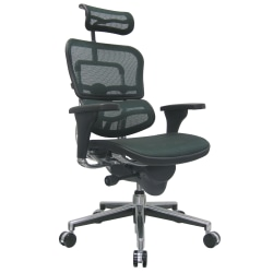 Raynor® Eurotech Ergohuman Mesh High-Back Office Chair, Black/Chrome