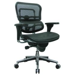 Raynor® Ergohuman Mid-Back Ergonomic Mesh Chair, Black/Chrome