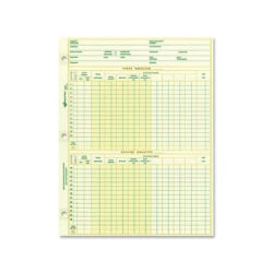 """Rediform National Payroll Filler Sheets - 8 1/2"""" x 10 7/8"""" Sheet Size - White - Green Sheet(s) - Recycled - 100 / Pack"""