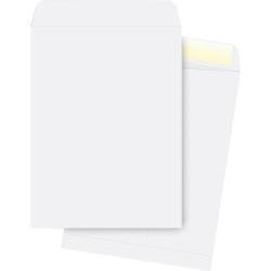 "Business Source 28 lb. White Catalog Envelopes - Catalog - #13 1/2 - 10"" Width x 13"" Length - 28 lb - Gummed - Wove - 250 / Box - White"