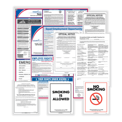 ComplyRight Federal, State And Public Sector Poster Set, English, Texas