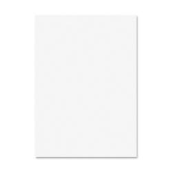 """Elmer's Four-ply Railroad Poster Board - Multipurpose - 22"""" x 28"""" - 50 / Carton - White"""