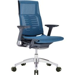 Raynor® Powerfit Ergonomic Mesh Mid-Back Executive Chair, Blue/Black