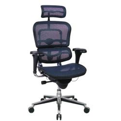 Raynor® Ergohuman High-Back Mesh Chair, Blue/Chrome