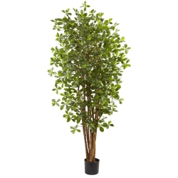 Nearly Natural 6'H Black Olive Silk Tree With Pot, Green/Black