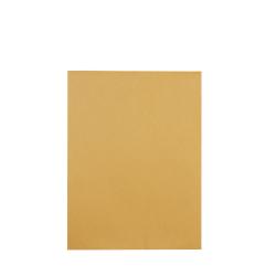 "Quality Park® Redi-Seal® Catalog Envelopes, 6 1/2"" x 9 1/2"", Brown Kraft, Box Of 100"