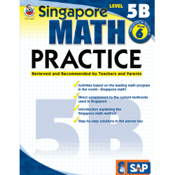 Common Core Math Practice Workbook, Math Level 5B, Grade 6
