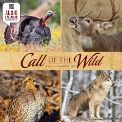 """Willow Creek Press Animals Monthly Wall Calendar, Call Of The Wild, 12"""" x 12"""", January To December 2021"""