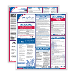 ComplyRight™ Federal And State Labor Law 1-Year Poster Service, English, New York