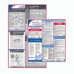 ComplyRight™ Federal And State Labor Law 1-Year Poster Service, English, Puerto Rico
