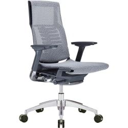 Raynor® Powerfit Ergonomic Mesh Mid-Back Executive Chair, Black/Gray