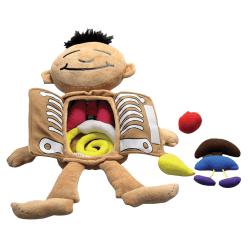 Roylco® What's Inside Me Doll