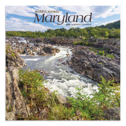 """Brown Trout Monthly Wall Calendar, Maryland, 24"""" x 12"""", January To December 2020"""
