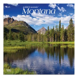 "Brown Trout Monthly Wall Calendar, Montana, 24"" x 12"", January To December 2020"