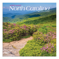 "Brown Trout Monthly Wall Calendar, North Carolina, 24"" x 12"", January To December 2020"