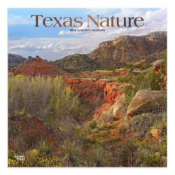 """Brown Trout Monthly Wall Calendar, Texas Nature, 24"""" x 12"""", January To December 2020"""