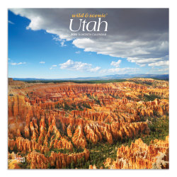 """Brown Trout Monthly Wall Calendar, Utah, 24"""" x 12"""", January To December 2020"""