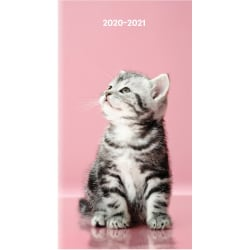 "Brownline Cat Cover 18-month Pocket Planner - Monthly - 1.5 Year - July 2021 till December 2022 - Twin Wire - Pink - Vinyl - 6.5"" Height x 3.5"" Width - Reference Calendar, Reminder Section, Compact, Notes Area, Pocket - 1 Each"