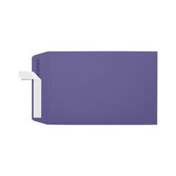 """LUX Open-End Envelopes With Moisture Closure, #6 1/2, 6"""" x 9"""", Wisteria, Pack Of 250"""